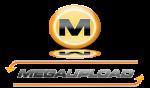 La Agencia Española de Protección de Datos no es competente en el caso Megaupload