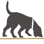 perro rastrear